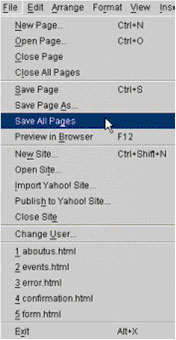 If you worked with multiple pages, save all of your changes by selecting Save All Pages from the File menu.